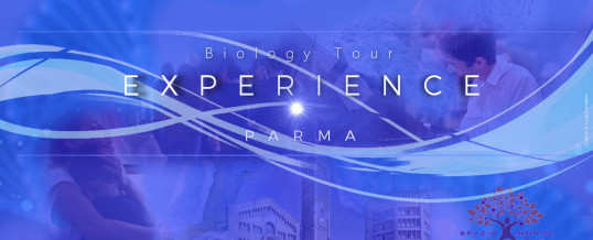 BIOLOGY EXPERIENCE