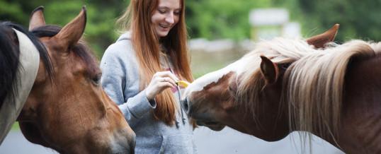 15-16-DICEMBRE Corso Base di Comunicazione Telepatica con gli Animali