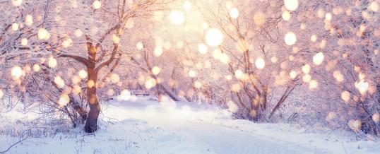 Speciale Meditazione Solstizio d'Inverno