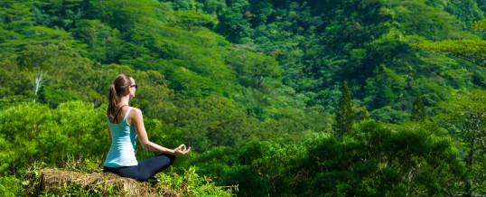 Workshop di Meditazione